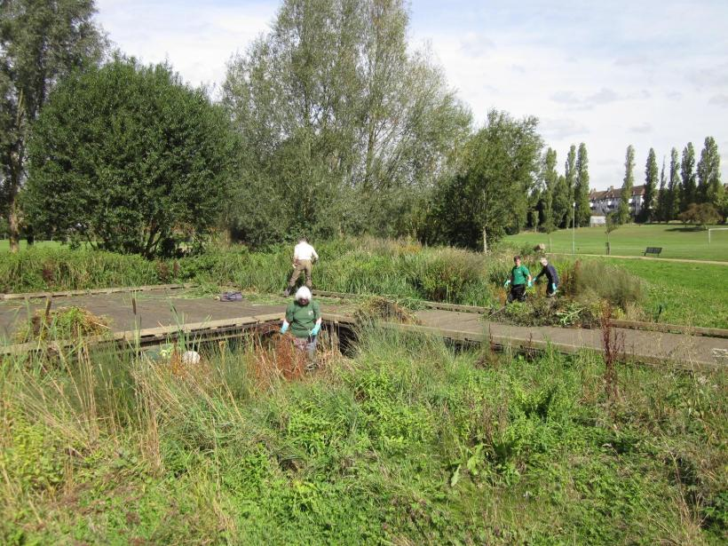 Nature's Gym volunteers working at Chinbrook meadows
