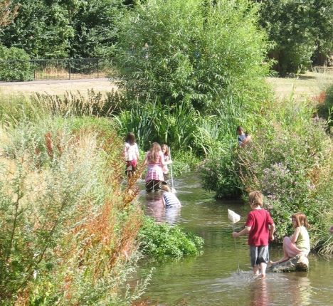 River dipping in Ladywell Fields