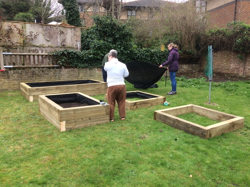 8 Richard and raised beds