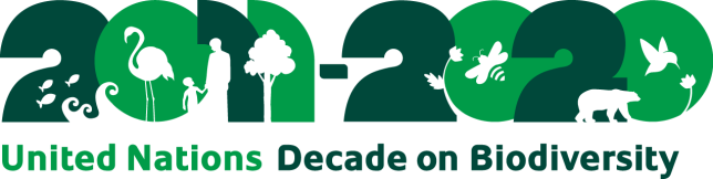Decade_logo