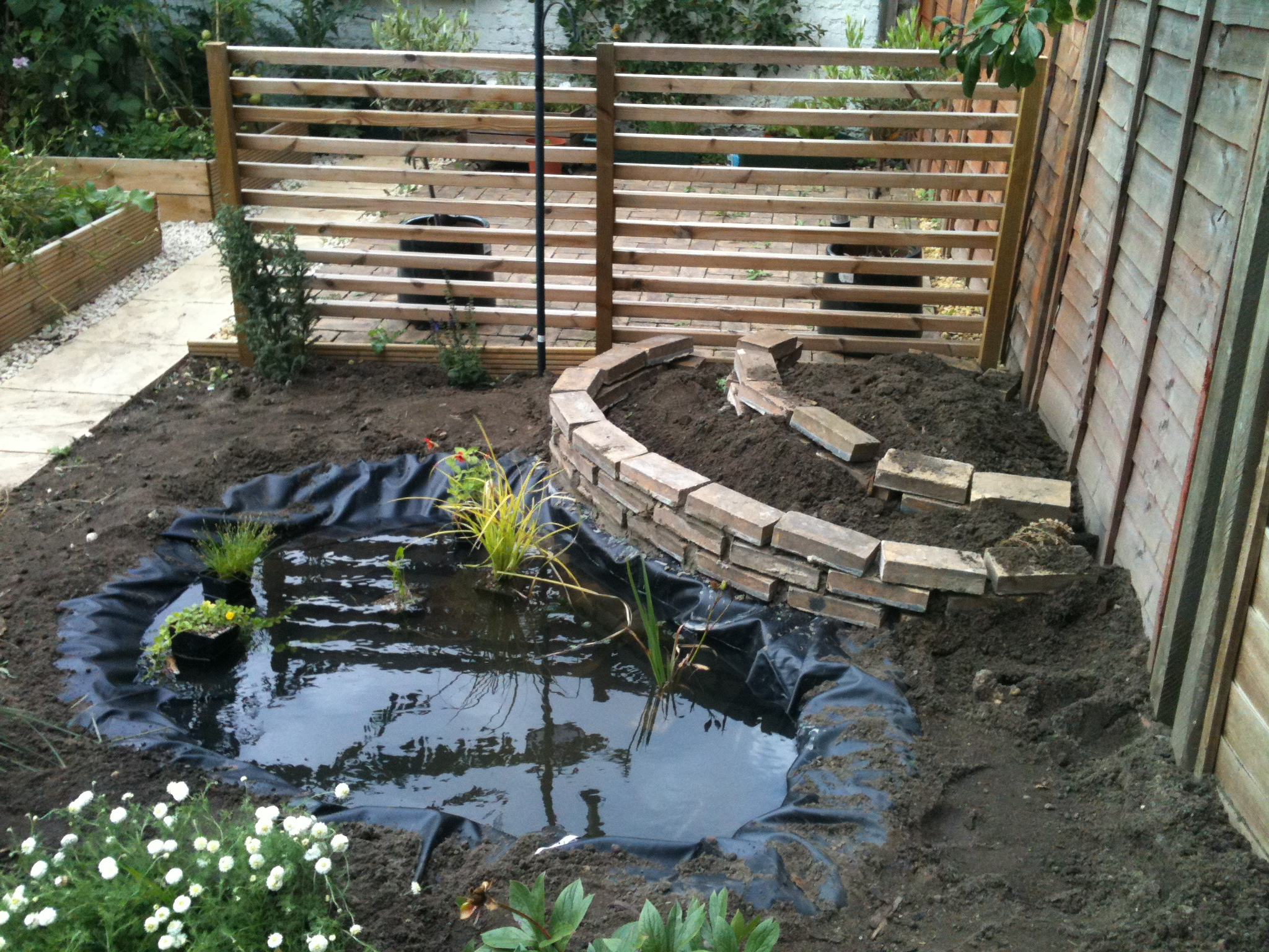 Create your own garden pond nature conservation lewisham for Making a garden pond