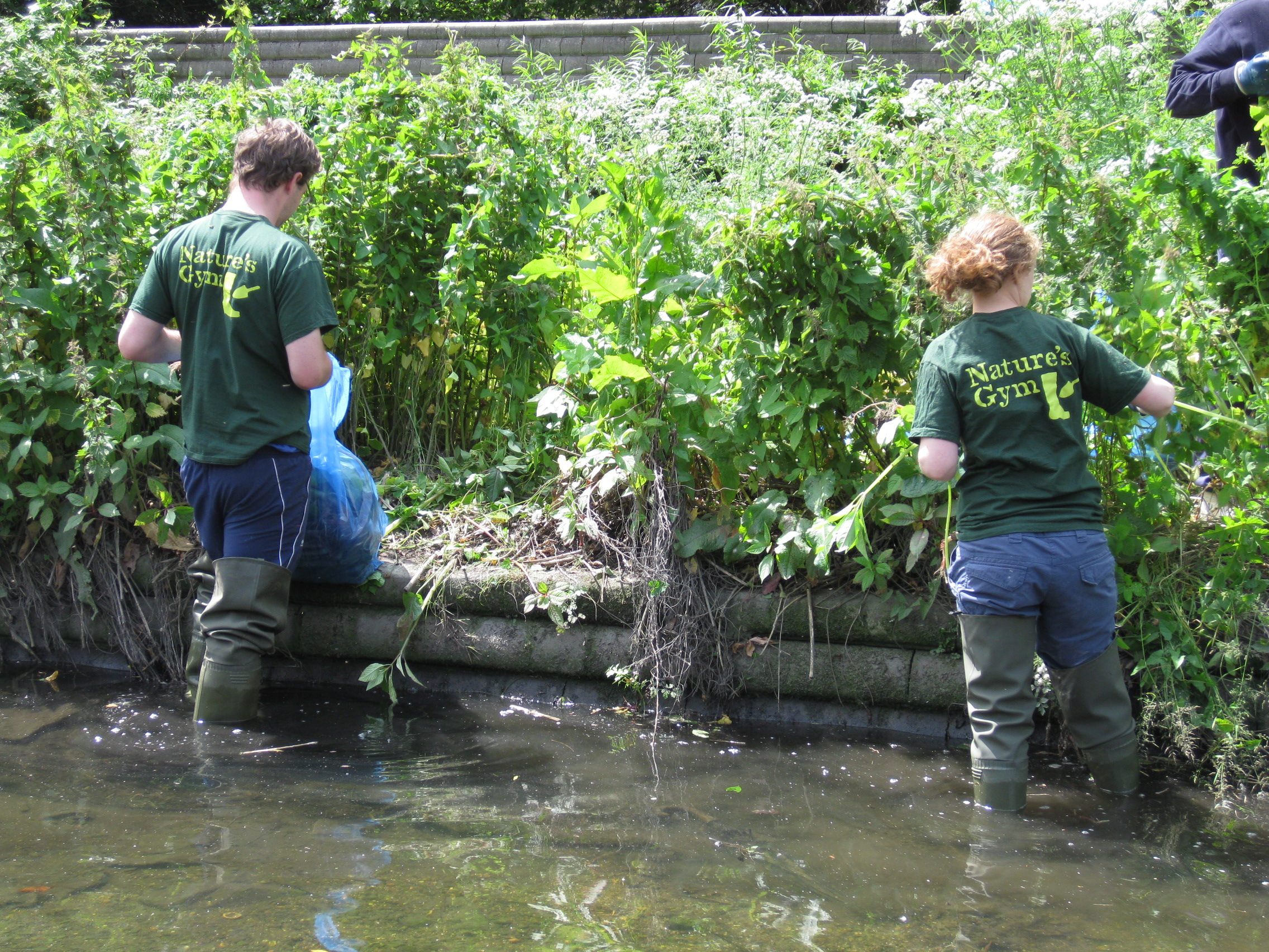 3 Rivers Clean Up | Nature Conservation Lewisham