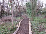 The woodchip path