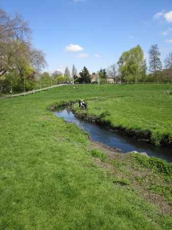 Bankside management in a sunny Ladywell Fields
