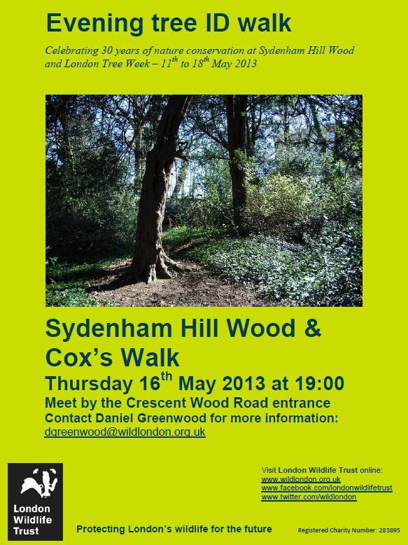 Sydenham Hill Woods