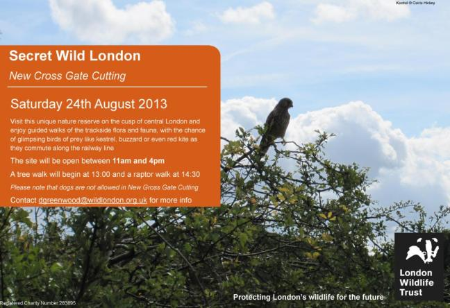 Visit this unique nature reserve with the London Wildlife Trust