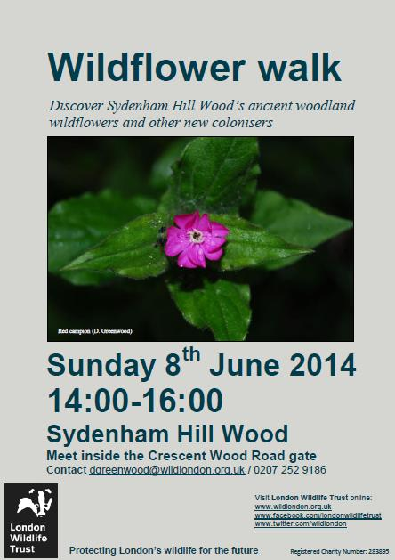 Sydenham Hill Wood event