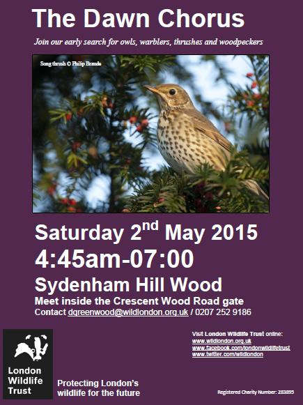 Dawn chorus 2nd may