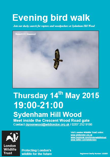 SHW 14.05.15 evening bird walk