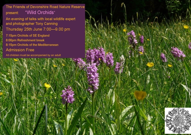 DRNR 2015 Orchid Poster