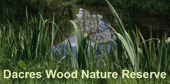 Dacres Wood AGM and Open Day