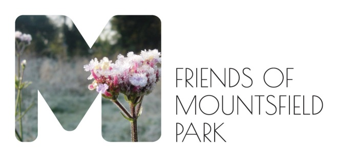 Join the Friends of Mountsfield Park at the meeting and give your views