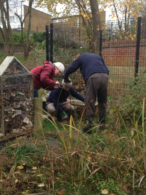 Nature's Gym volunteers get to work on 'live' willow hedge
