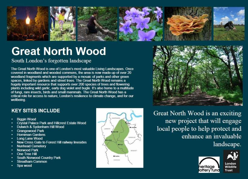 2016_02_24 Great North Wood info