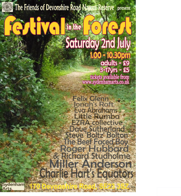 Festival in Forest