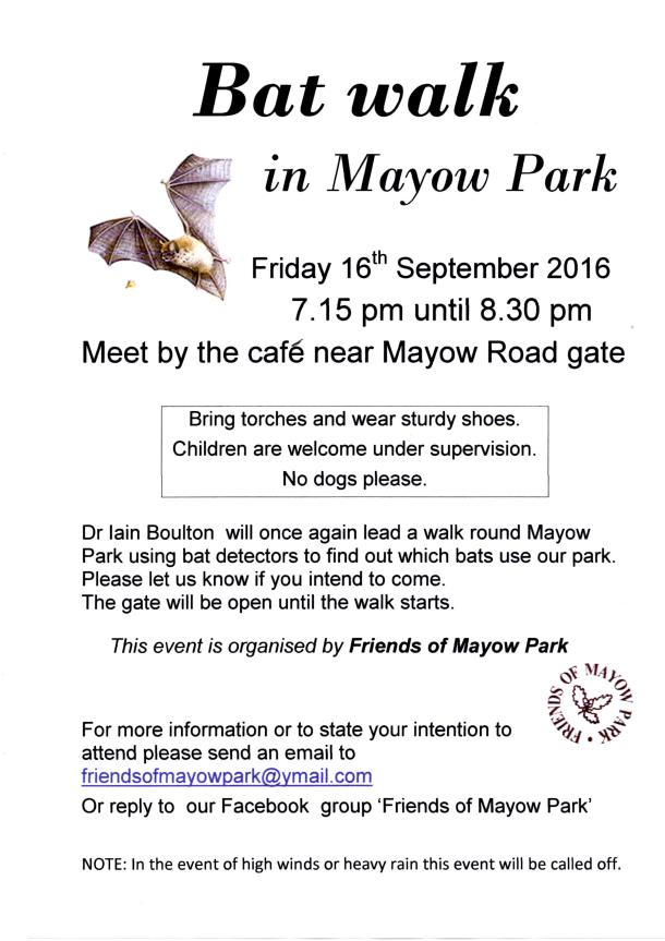 Mayow Park Bat walk