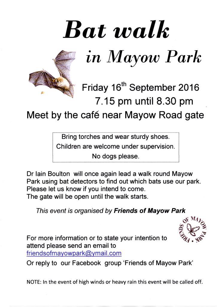 Mayow Park Bat walk