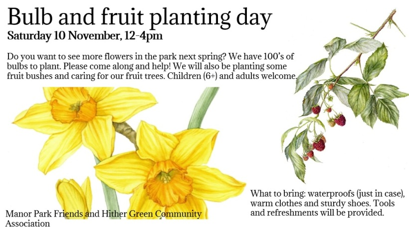 Manor park planting day
